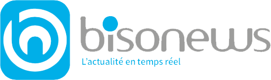 logo bisonews