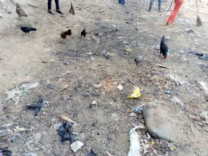 Kin-Bopeto: La Fondation Liza Nembalemba sur terrain 4