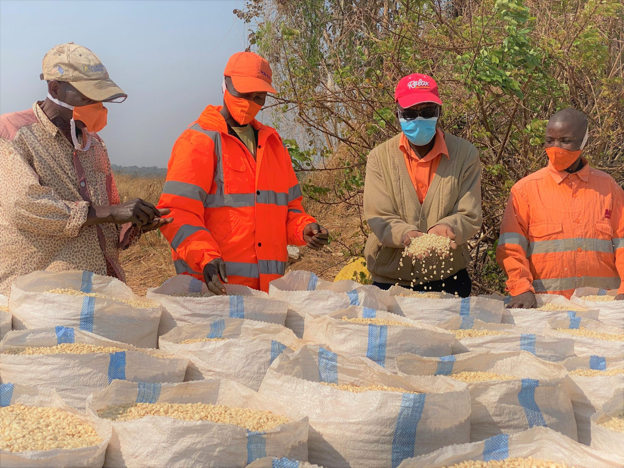 Seed Multipliers Muombe village-min